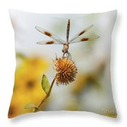 Dragonfly On Dead Bud Throw Pillow