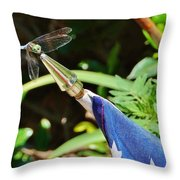 Dragonfly On Flag Throw Pillow