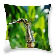 Dragonfly On Flag Post Throw Pillow