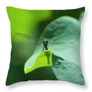 Dragonfly On Leaf Throw Pillow