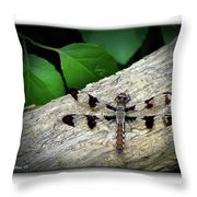 Dragonfly On Log Throw Pillow