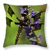 Dragonfly On Salvia Throw Pillow