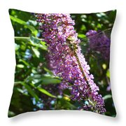 Dragonfly On The Butterfly Bush Throw Pillow