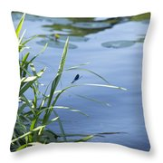 Dragonfly On The Lake Throw Pillow