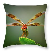 Dragonfly Pitstop Throw Pillow