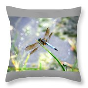 Dragonfly Portrait Throw Pillow