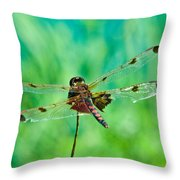 Dragonfly Rear Approach Throw Pillow