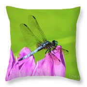 Dragonfly Resting Throw Pillow