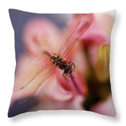 Dragonfly Serenity Throw Pillow