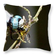 Dragonfly With Yellowjacket 2 Throw Pillow