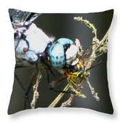 Dragonfly With Yellowjacket 3 Throw Pillow