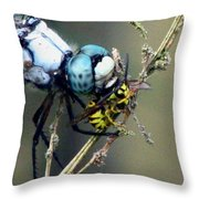 Dragonfly With Yellowjacket 4 Throw Pillow