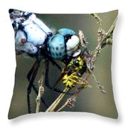 Dragonfly With Yellowjacket 5 Throw Pillow