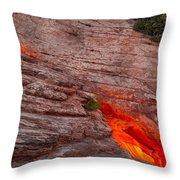 Dragon's Keep Throw Pillow