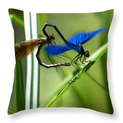 Dragoonfly Throw Pillow
