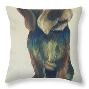 Drahthaar Amadeus Throw Pillow