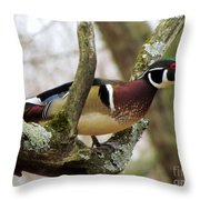 Drake Wooduck 1 Throw Pillow