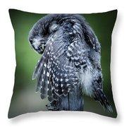 Draktrens Throw Pillow