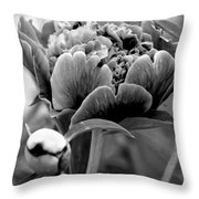 Drama In The Garden Throw Pillow