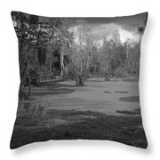 Drama In The Swamp II-black And White Throw Pillow