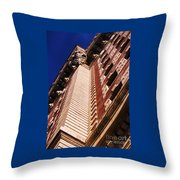 Drama Of The Belvedere Throw Pillow
