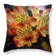 Dramatic 1536 Idp_2 Throw Pillow