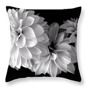 Dramatic Dahlias Throw Pillow
