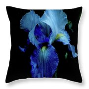 Dramatic Throw Pillow