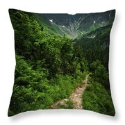 Dramatic Mountain Landscape With Distinctive Green Throw Pillow