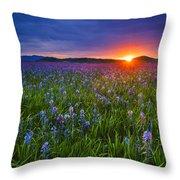 Dramatic Spring Sunrise At Camas Prairie Idaho Usa Throw Pillow