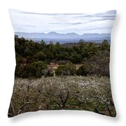Draney Orchard Pano Throw Pillow