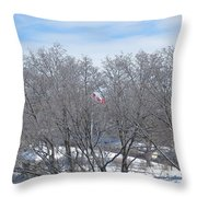Drapeau Canadien / Canadian Flag Throw Pillow