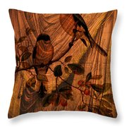 Draw Back The Curtain Throw Pillow