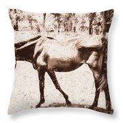Drawn Ranch Horse Throw Pillow