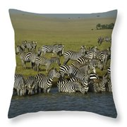 Drawn To Water Throw Pillow