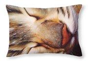 Dream Throw Pillow by Elena Kolotusha