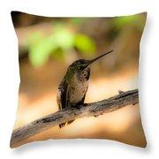 Dream Hummingbird Throw Pillow
