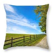 Dream Path Throw Pillow