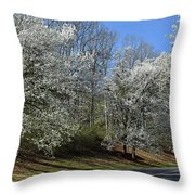 Dreamin' Of A White Spring No.5 Throw Pillow