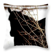 Dreaming Of Black Beauty Throw Pillow