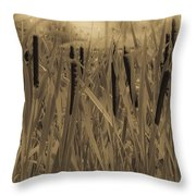 Dreaming Of Cattails Throw Pillow