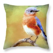 Dreaming Of Prince Charming Throw Pillow