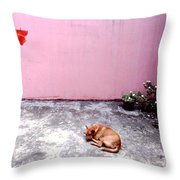 Dreaming Of The Weekend Throw Pillow