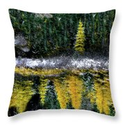 Dreams Of A Young Tamarack Throw Pillow