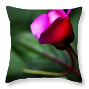 Dreams Realized Throw Pillow
