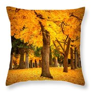 Dreamy Autumn Day Throw Pillow