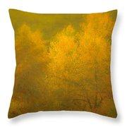 Dreamy Autumn Throw Pillow