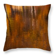 Dreamy Autumn Throw Pillow