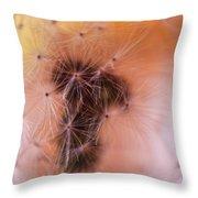 Dreamy Danadile Throw Pillow
