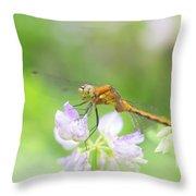 Dreamy Dragon Throw Pillow